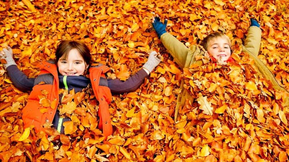 Diákkedvezmény az őszi szünetben